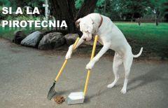Menos perros y más pirotecnia